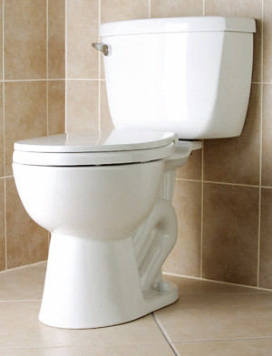Features to compare when purchasing a new toilet